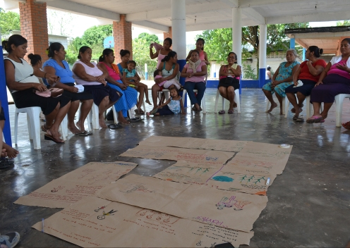Semillero de mujeres; Cultivando nuestros saberes. Talleres en la región Chinantla de Oaxaca 2017.